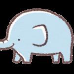 ゾウの性格・特徴・相性 動物占い 面倒くさがり・興味ないものには無関心・どっしりした雰囲気だけど心は乱れている