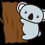 コアラの性格・特徴・相性 動物占い 楽しいのが一番・出来る限り寝ていたい・腹黒い